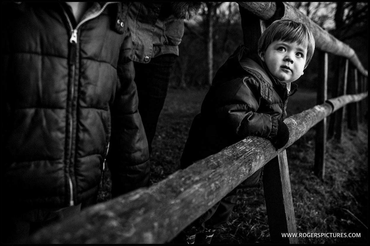 Boy on wooden railings