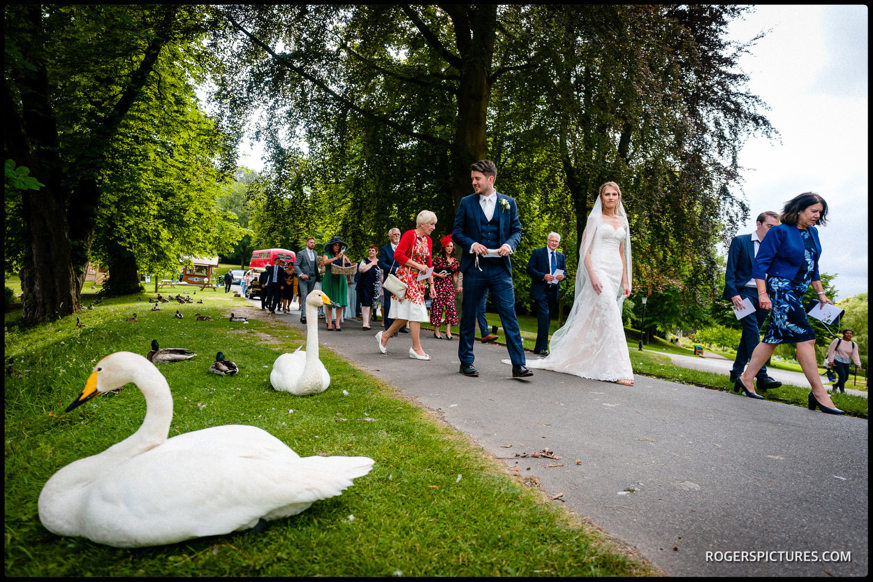 Birde and groom walk past a swan at Leeds Castle